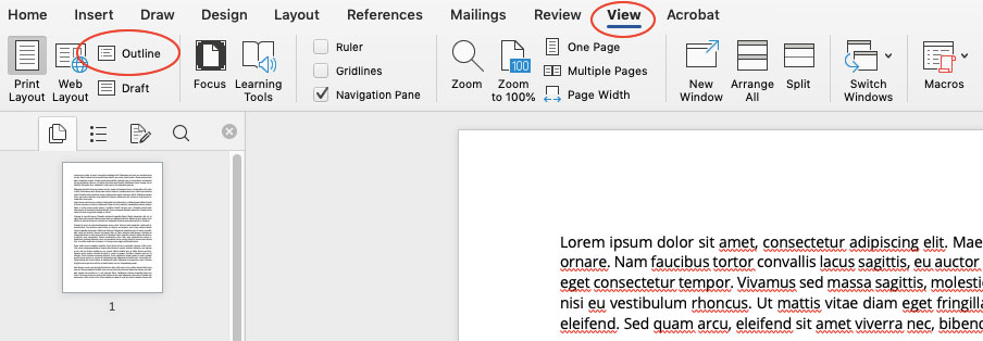 Microsoft Word Outline View