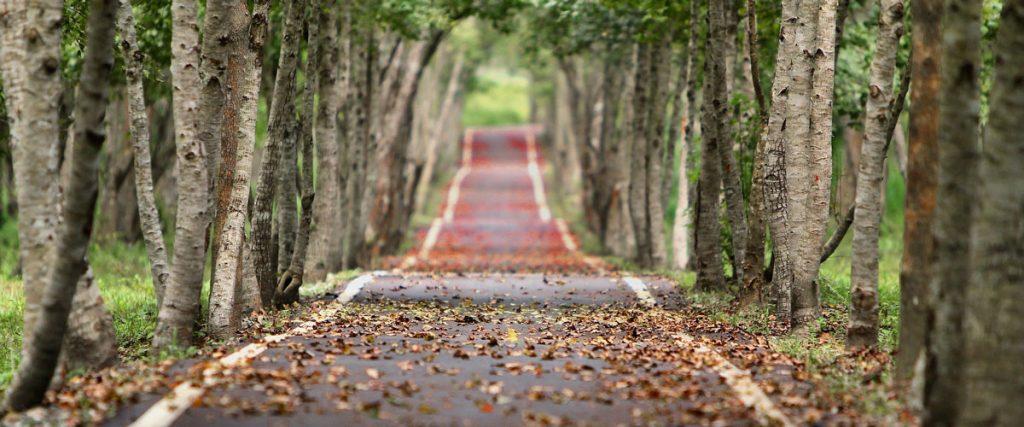 Buyer's Journey vs the Customer's Journey